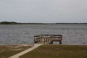Such a lovely place for an outing - Princess Place Preserve in Palm Coast, FL